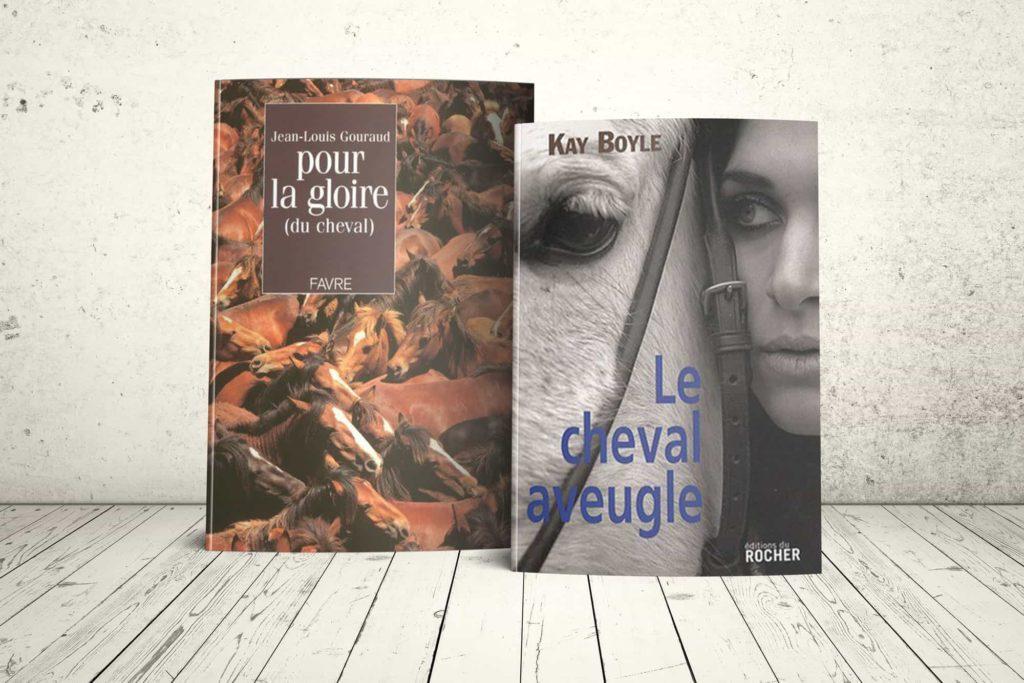Illustrations de litterature par l'artiste LUZ photographe