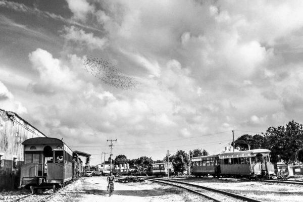 Photographie en noir et blanc, paysage de Cuba. Une œuvre accompagnée de son passe-partout